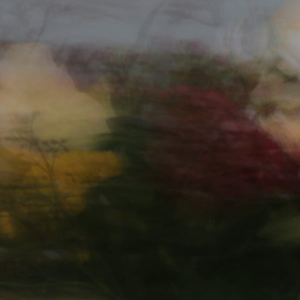 Blumenstrauss (Jens Hüttenberger)